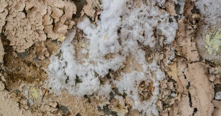 traitement salpêtre par les experts humidité Vivrosec